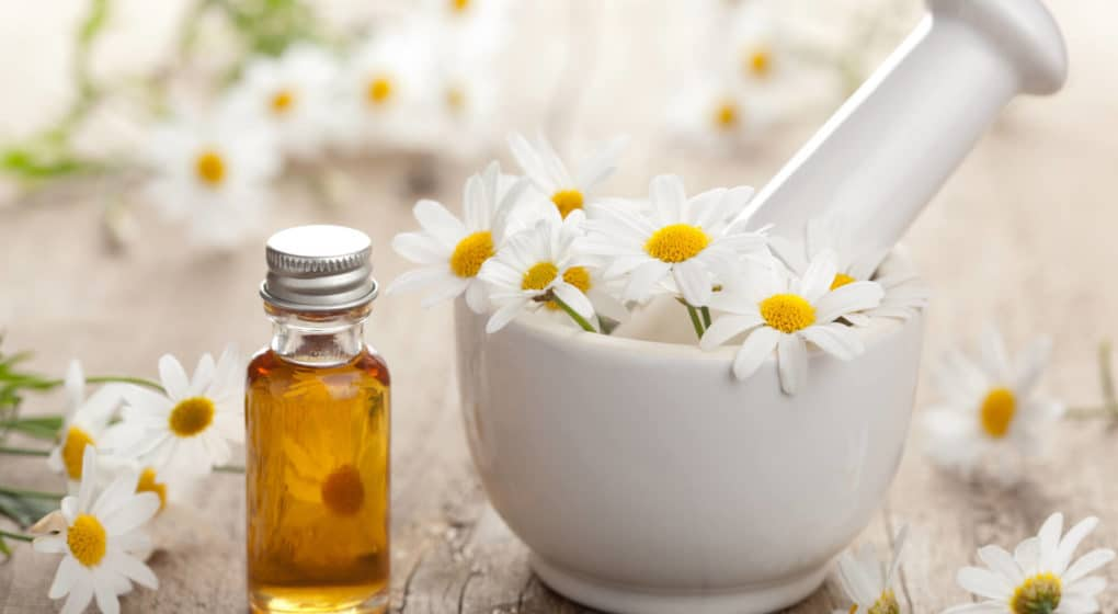 Chamomile Supplements: Benefits, Dosage and Safety